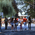 WB_1981_Slide01