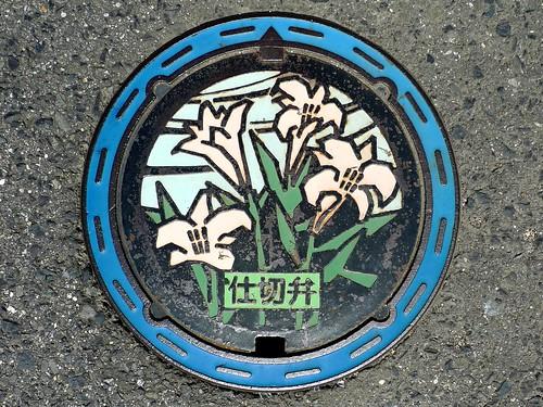 Izumisano Osaka, manhole cover 2 (大阪府泉佐野市のマンホール2)