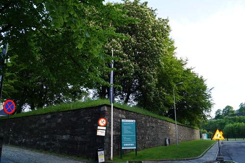 Bergenhus festning (79)
