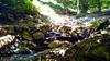 Rierol i pont de pedra by Rafel Miro