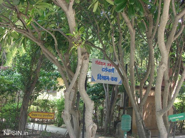 Beautiful Green Area and Rest Area in Teerthdham Mangalayatan