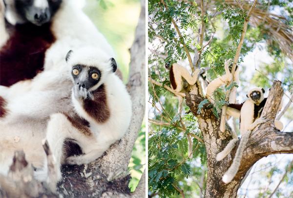 RYALE_Madagascar_Blog3_017