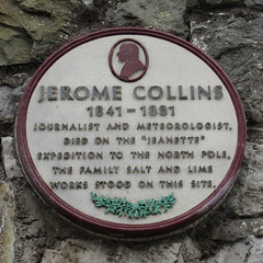 Photo of Purple, white and green plaque № 30772
