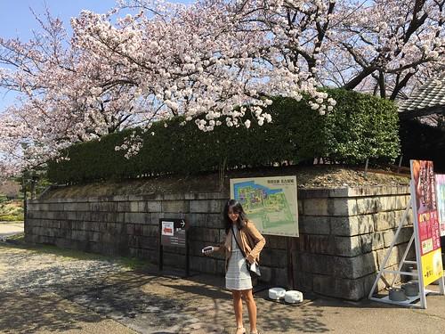 Julienne in Japan7