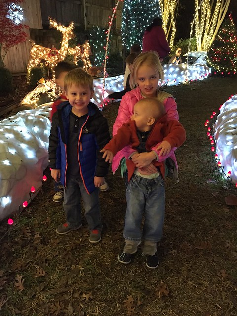 Texas Night Before Christmas Lights