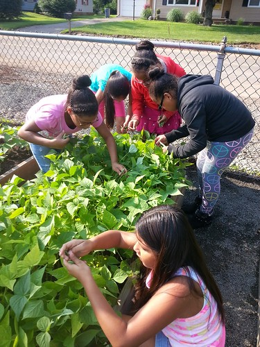Nathan Hale students care for a garden bed.