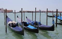 Venice, 威尼斯