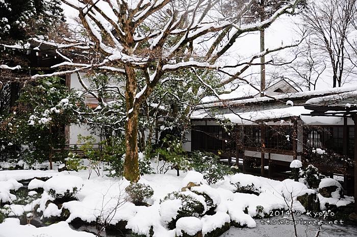 2014雪三千院 (6).jpg