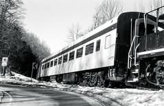 Scenic Train