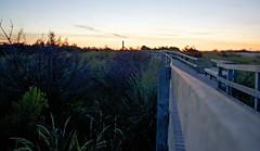 Fire Island Sunrise 8/28/15