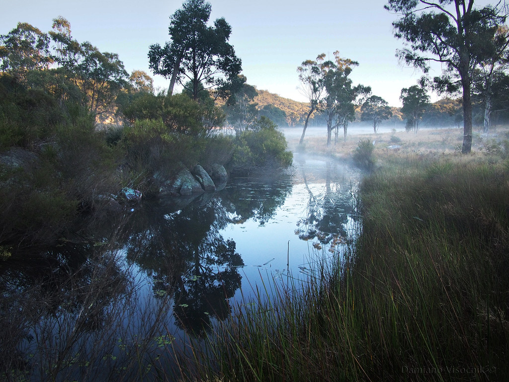 Misty creek_c