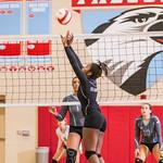 LRHS Varsity Volleyball v ACF