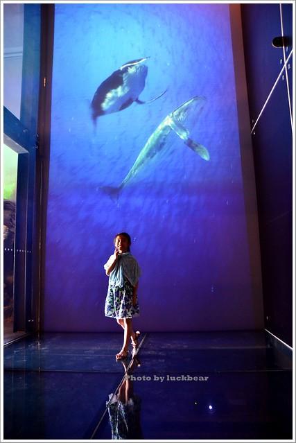 基隆國立海洋科技博物館007-DSC_7339