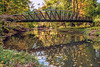 Bridge In The MetroParks by Reggie TheJazzman
