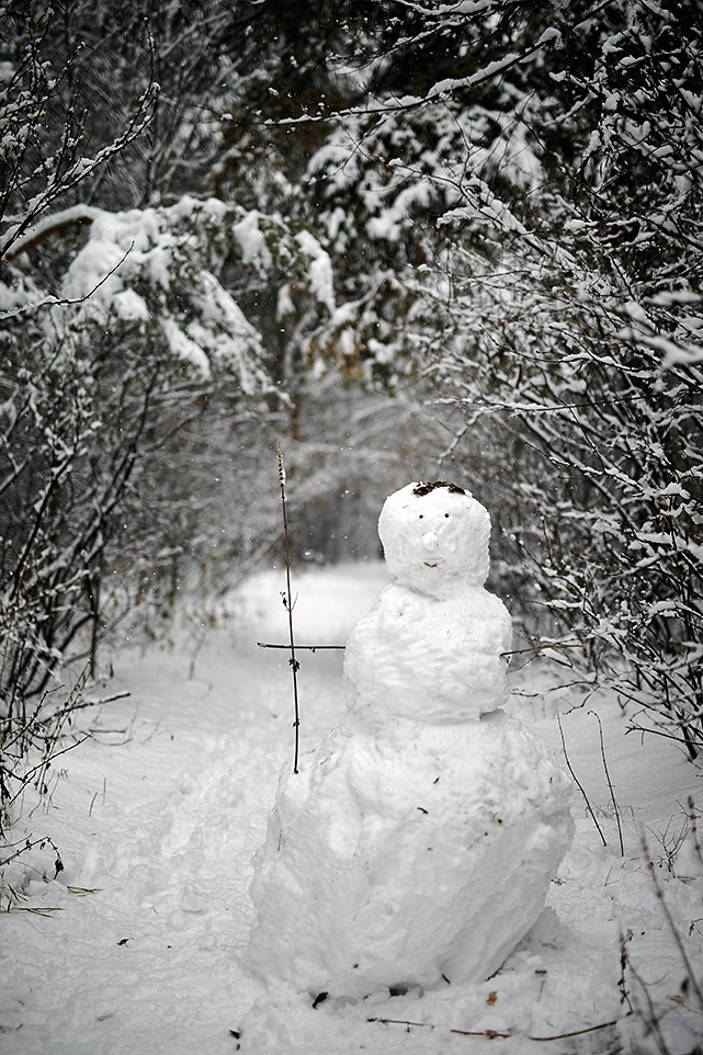 Тёплый снег 6