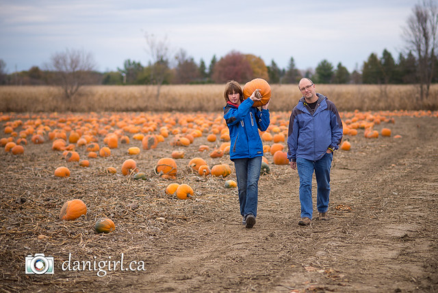 Pumpkin picking 2015-3
