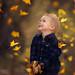 Autumn Joy by ljholloway photography