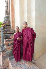 Little monks in Dhammayangyi - ဓမ္မရံကြီးပုထိုး, Bagan