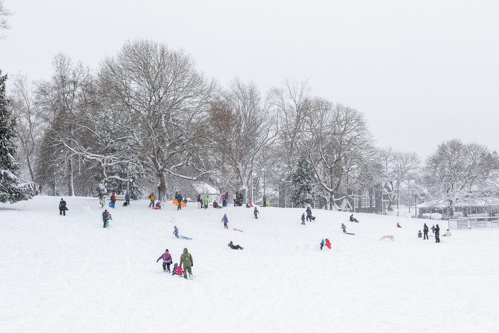 Families from Portland's Irvington neighborhood enjoy a snowy day in Irving Park