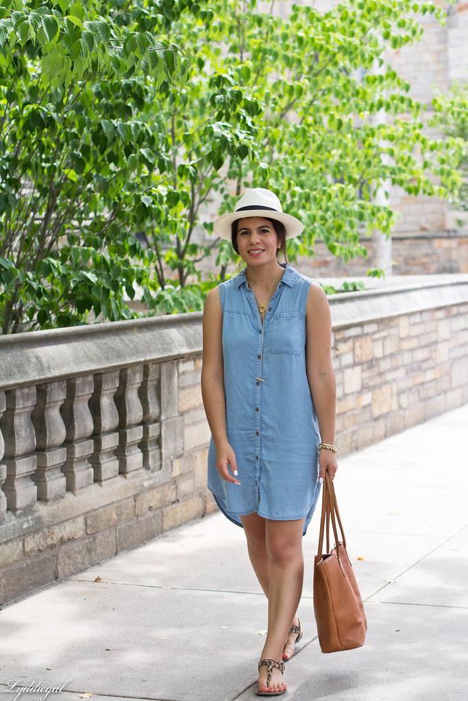 chambray dress, panama hat, leather tote-3.jpg