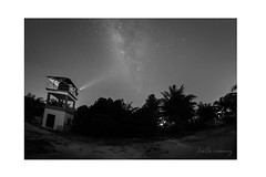 Star Gazer in BW