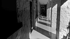 151431: Columns & Shadows
