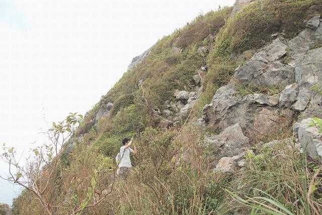 繩索攀爬燦光寮山