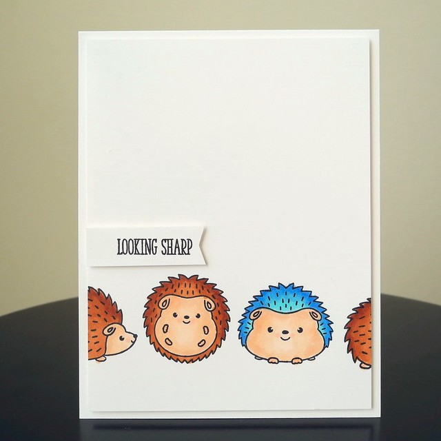 Looking Sharp by Jennifer Ingle #JustJingle #ClearlyBesotted #SimonSaysStamp #Cards