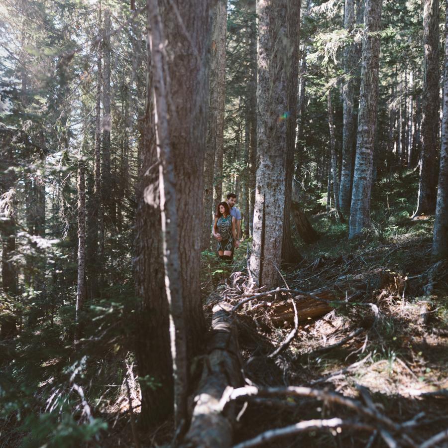 Mt. Rainier Engagement Session, Liz Morrow Studios