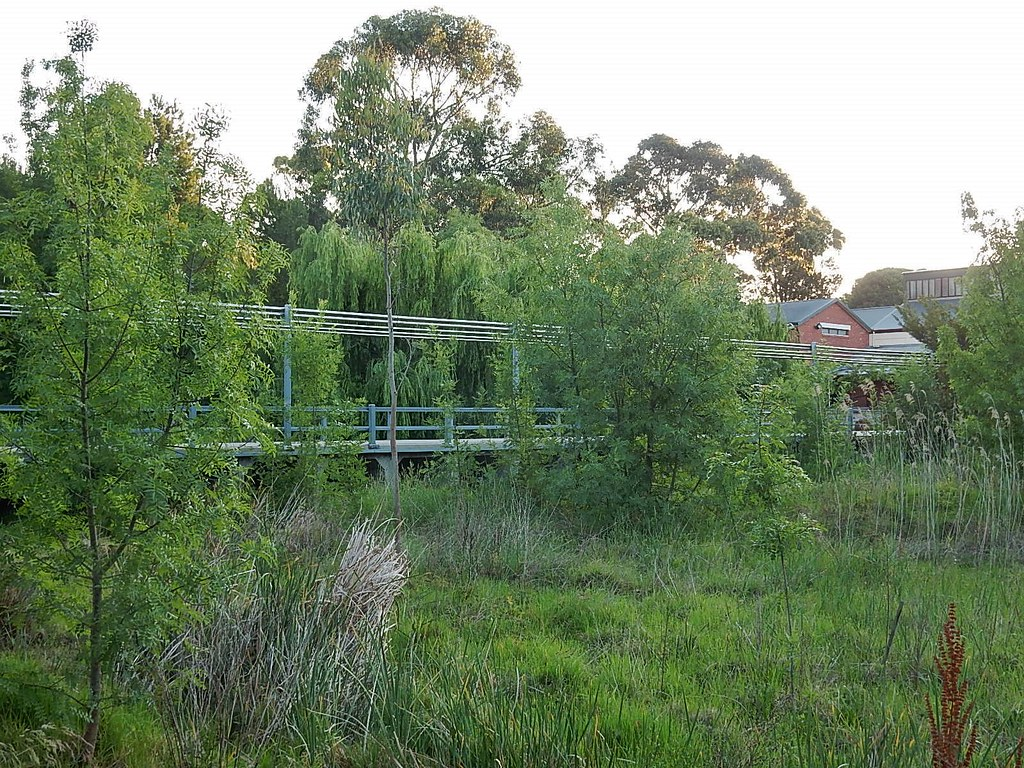 Mclaren Vale Adelaide Region South Australia Around