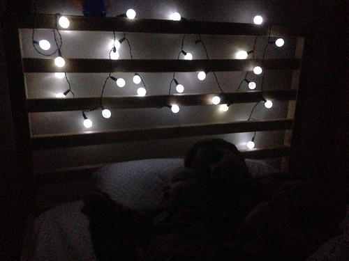 Bed Lights