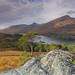 Glen Affric View. by Gordie Broon.