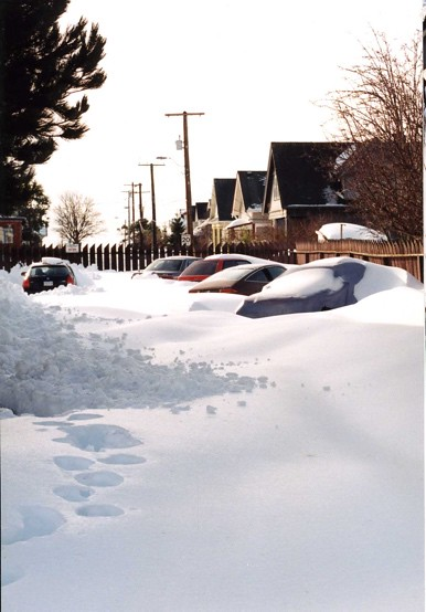 Cars buried in James Bay. Photo Peter Friebel