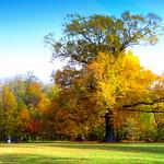 Peninsula at Fall