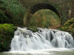 Arbirlot Falls 2.