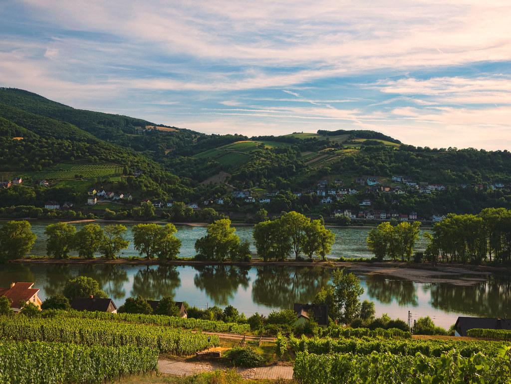 Zeitloser Rheingau