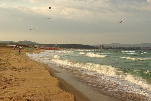 sea summer beach nature water birds landscape waves view bulgaria blacksea primorsko