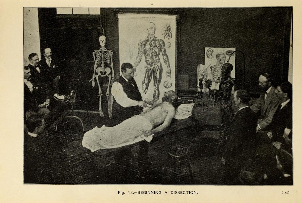 Images from The Champion Text Book on Embalming (1897) – The