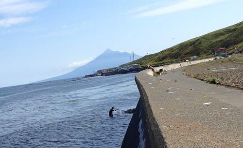 rebun-island-seals-watching-fisherman