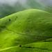 Kudremukh Trails by tgphotography.iim