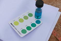 水中氨氧質(高含量)。攝影:晁瑞光。