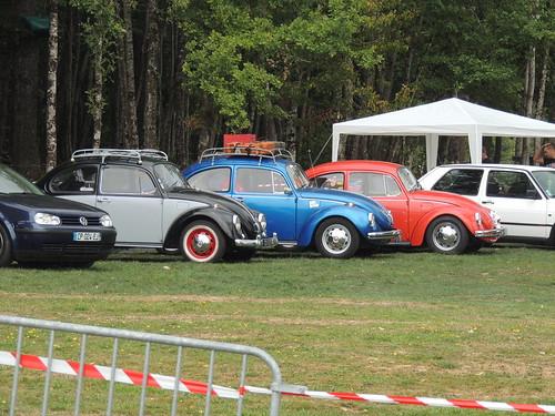 volkswagen type1 cox (13)
