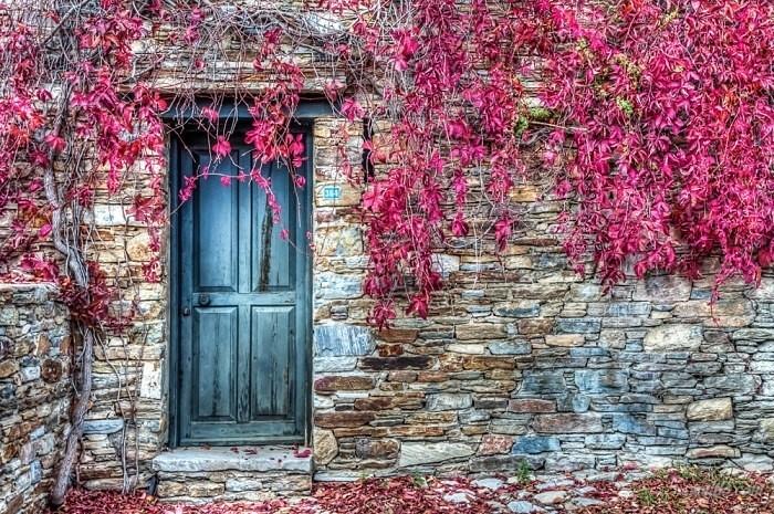 Златната есен в цялата й прелест