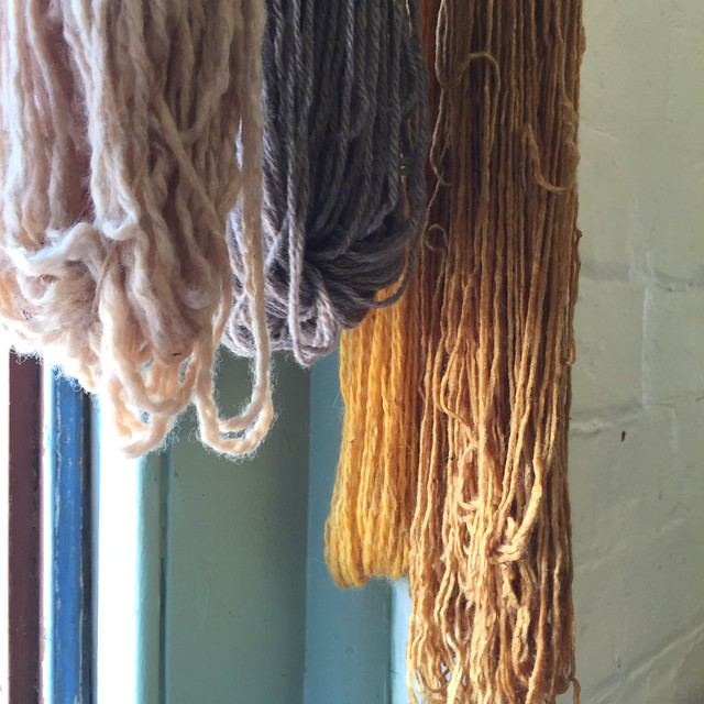 Natural dyeing & eco printing