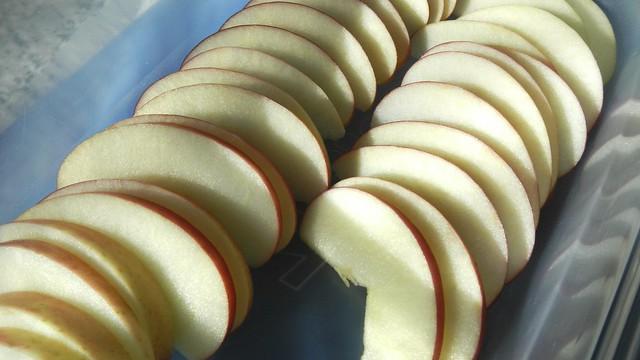 Apple Galette 13