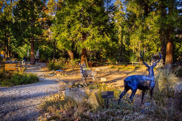 Idyllwild Museum Garden