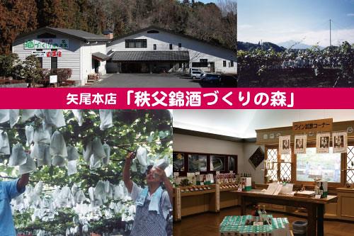 11/23(月祝)SL秩父ワイン列車☆矢尾本店「秩父錦 酒づくりの森」