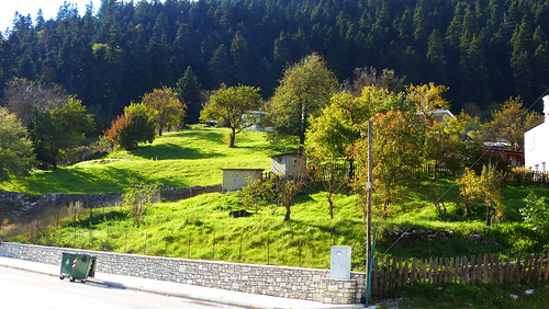 169ratio panasoniclumixdmctz40 green greece trees δεντρα πρασινο φυση ελλαδα θεσσαλία nature natur natura thessalia