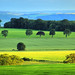 Carse of Gowrie - Hazy Scottish View by Magdalen Green Photography