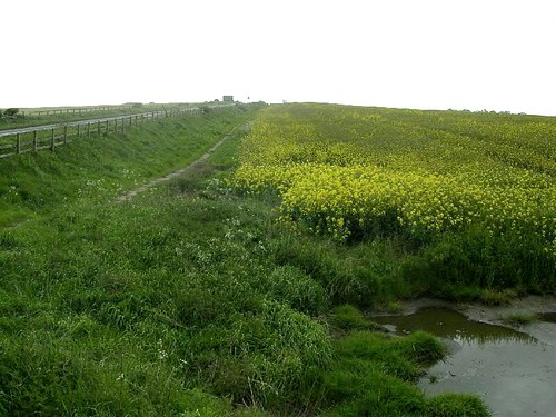 The line of the ditch east of Milecastle 17